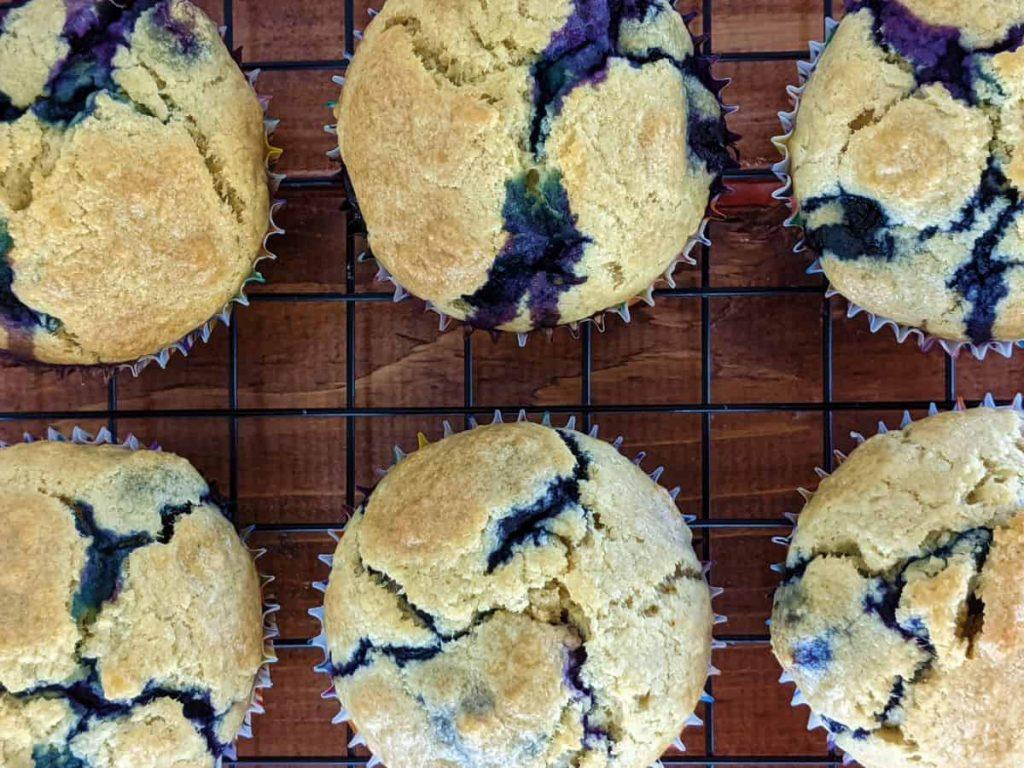 blueberry pancake cupcakes on cooling rack