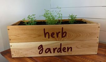 wooden herb box with herbs planted in it on a table