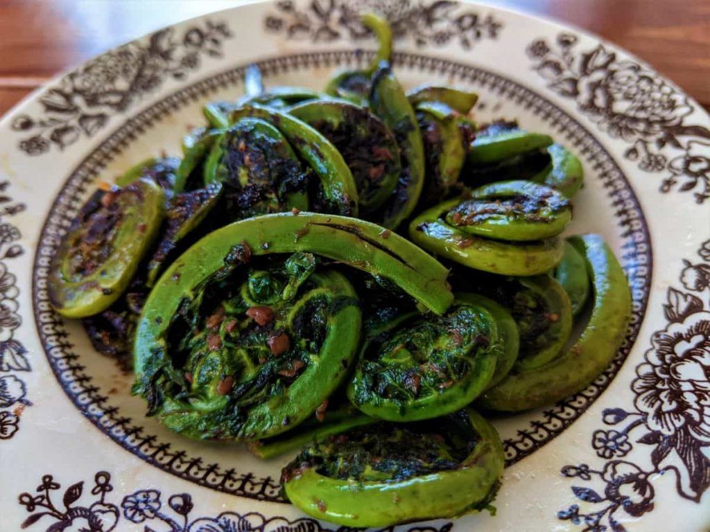 cooked fiddleheads on a dish